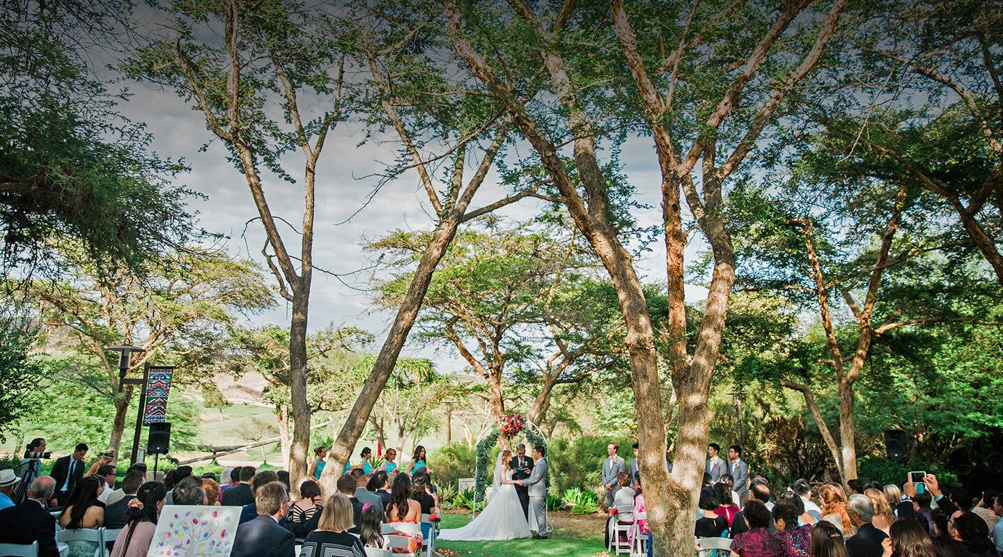 Wedding ceremony at Harusi Lawn