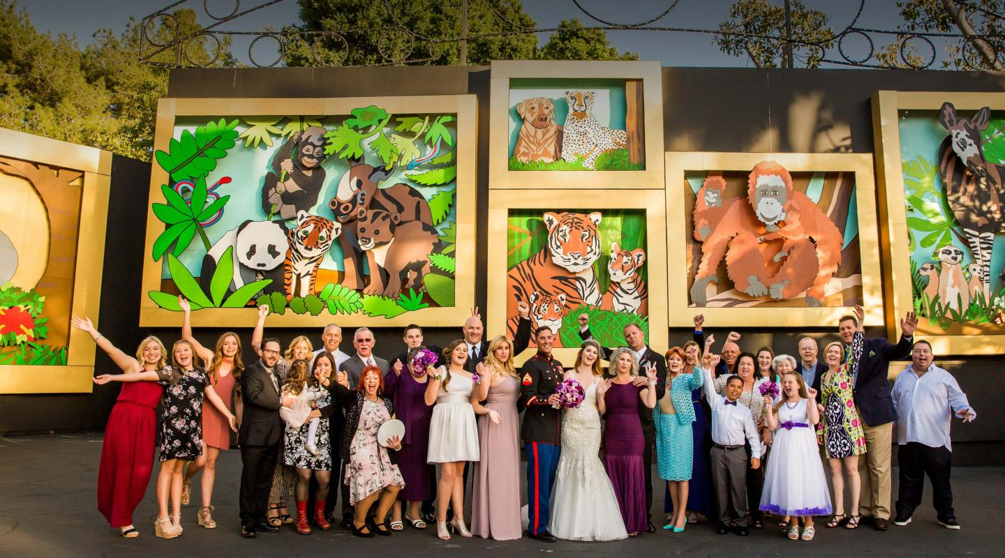 wedding guests in front of animal scenes in Zoofari Party Area