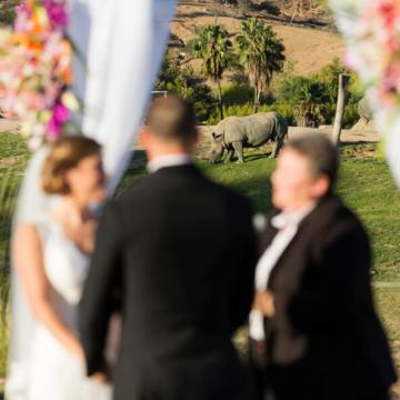Ceremony with Rhino in background at Kijamii Overlook