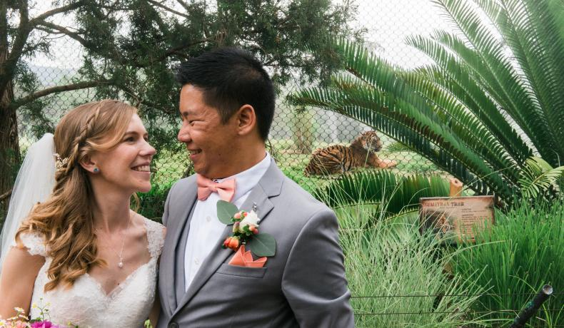 wedding couple with tiger in background